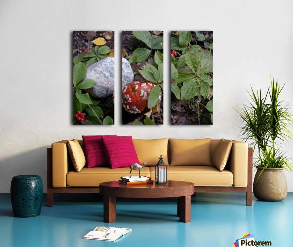 Red Mushroom & Rock Split Canvas print