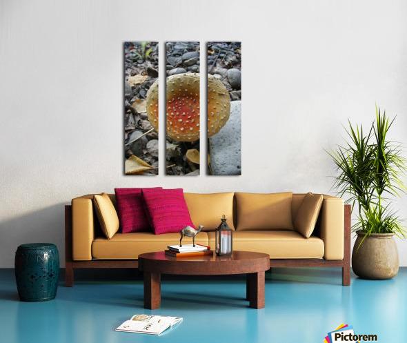 Red Mushroom Split Canvas print