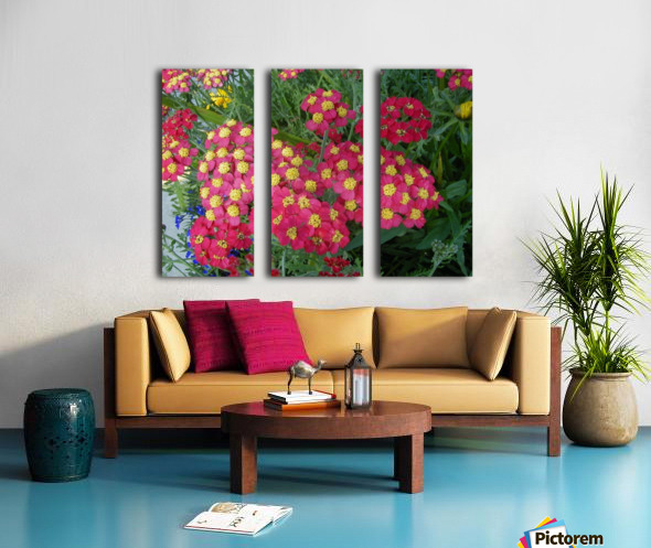Red Flowers Split Canvas print
