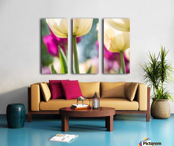 Under The Tulips - Sous Les Tulipes Split Canvas print