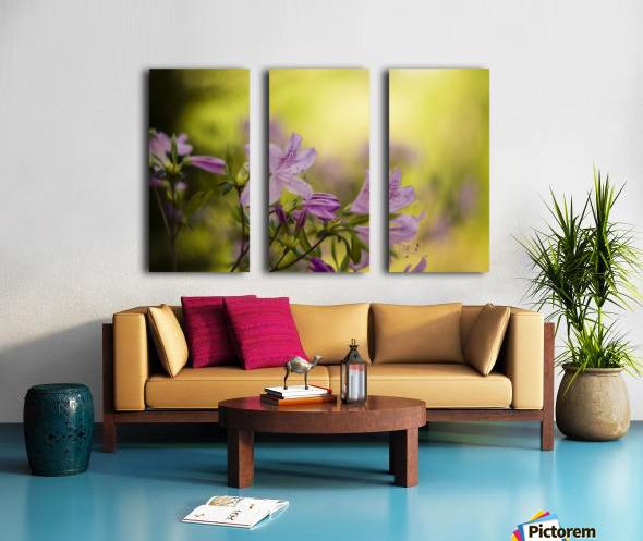 0239 Split Canvas print