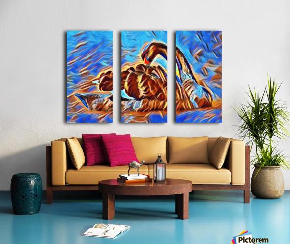 Swan Splash Split Canvas print