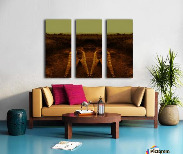 A (2) Split Canvas print