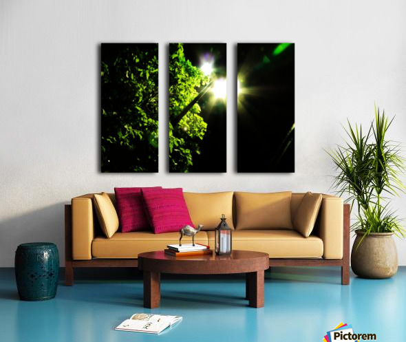 B (15) Split Canvas print