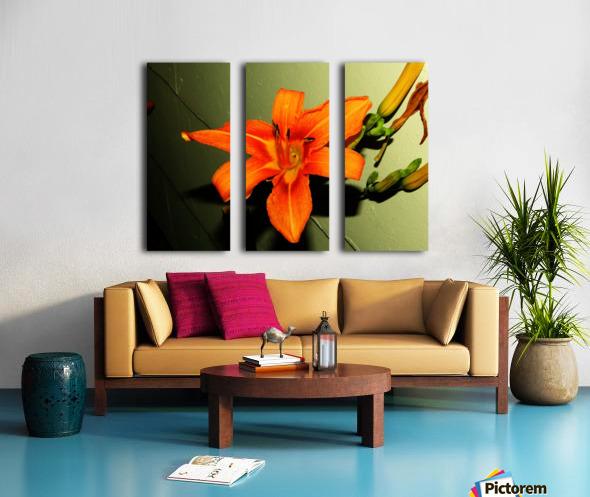 sofn-D014FA2F Split Canvas print