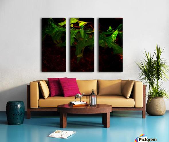 sofn-CA35DBE6 Split Canvas print