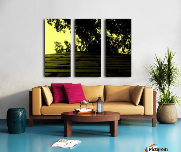 C (15) Split Canvas print