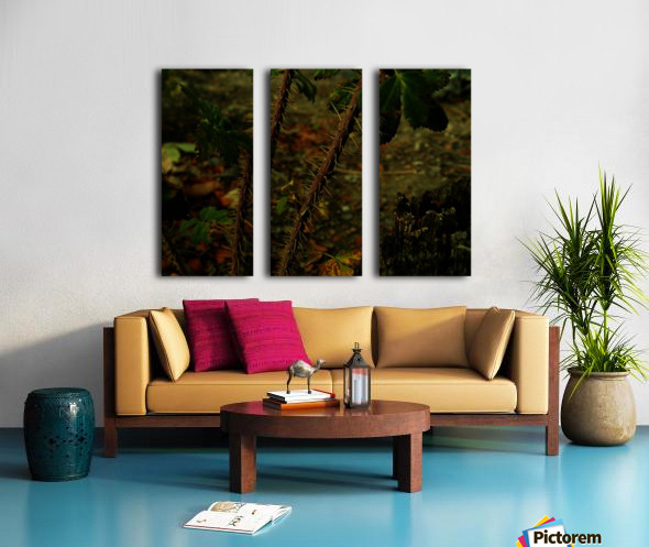 D (14) Split Canvas print