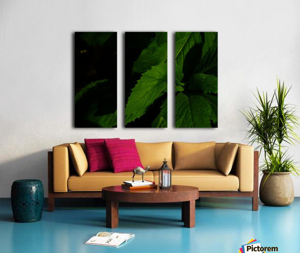 F (11) Split Canvas print