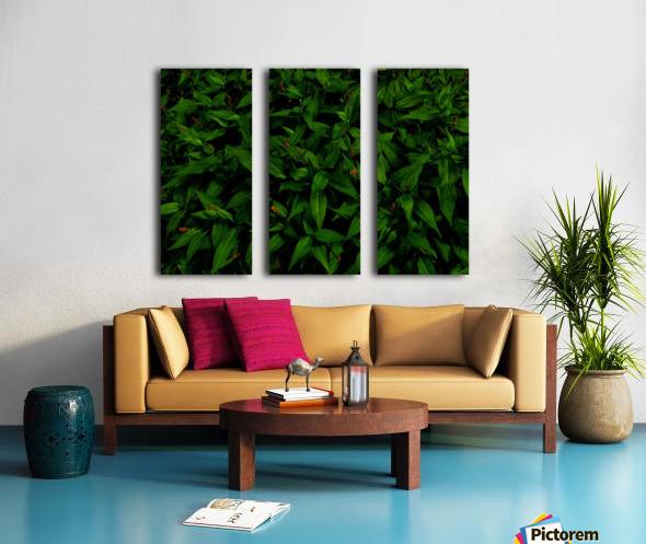 sofn-6D81AE31 Split Canvas print