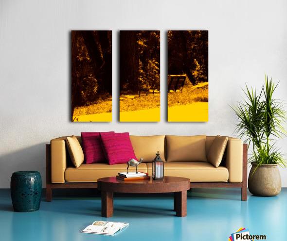 sofn-A43A391F Split Canvas print
