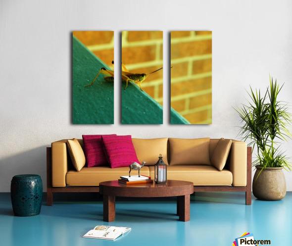 H (10) Split Canvas print