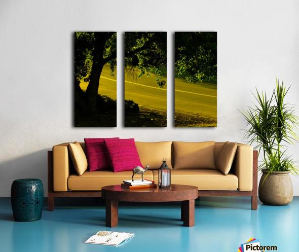 sofn-2B15499B Split Canvas print