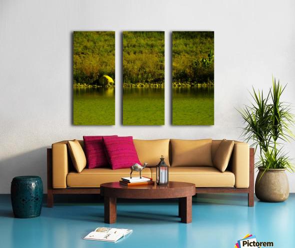 sofn-23FF155D Split Canvas print