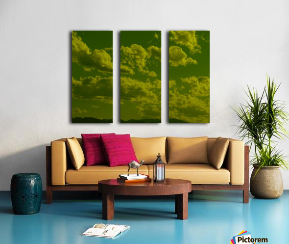 H (8) Split Canvas print