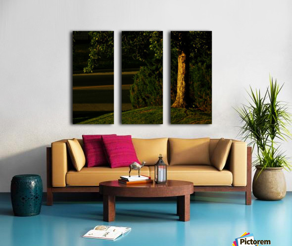 H (15) Split Canvas print