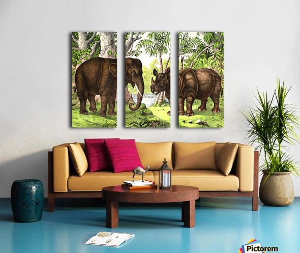 Elephant And Rhinoceros Split Canvas print