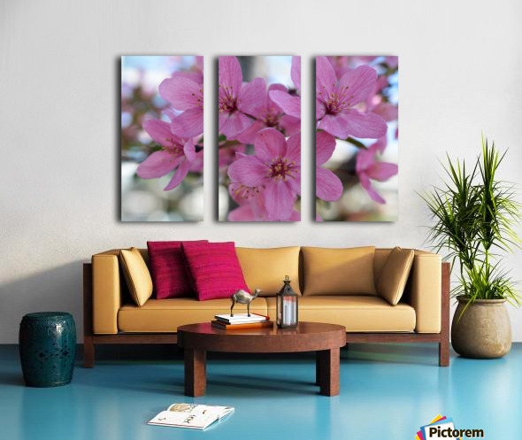 Pink Dogwood Photograph Split Canvas print