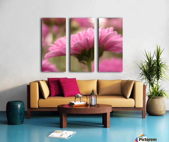 Pink Flowers Photograph Split Canvas print