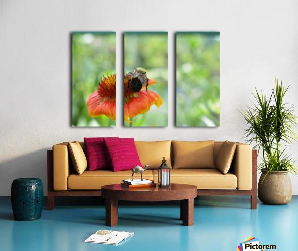 Bee On Orange Flower Photograph Split Canvas print