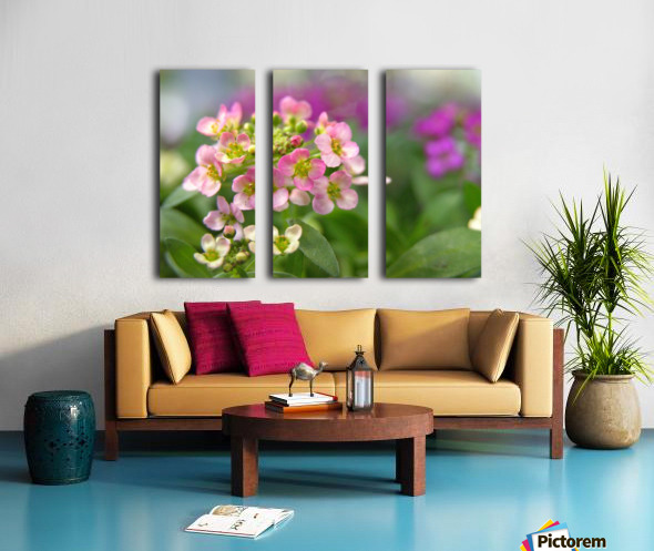 Small Pink Flowers Photography Split Canvas print