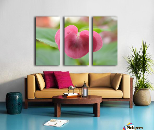 Heart Shape Pink Flower Photograph Split Canvas print