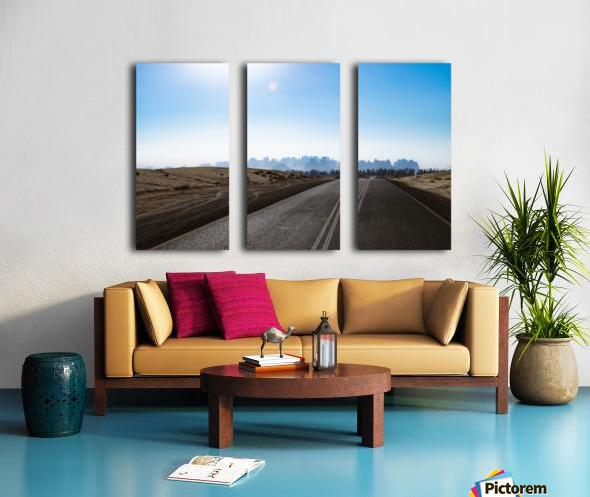 Road Trip Split Canvas print