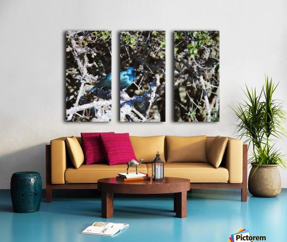 Blue Reflective Bird Split Canvas print
