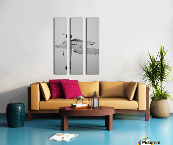 Lotus Split Canvas print