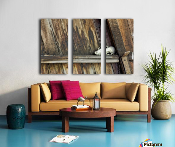 Bone and Wood Split Canvas print