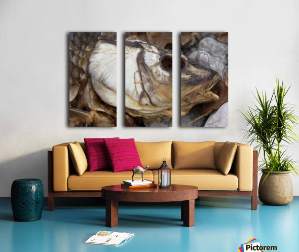 Carp no More Split Canvas print
