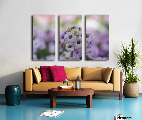 Small Purple White Flower Photograph Split Canvas print