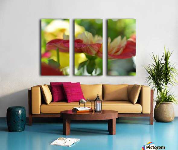 Garden Flowers Art Photograph Split Canvas print
