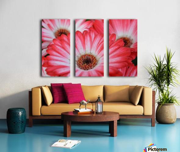 Red & White Flower Photograph Split Canvas print
