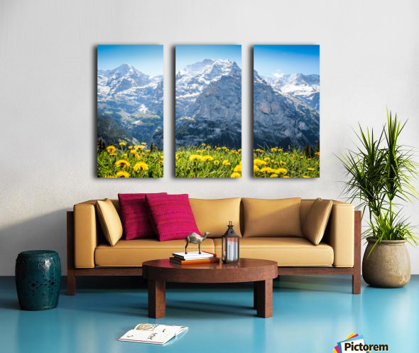 Wildflower Jubilee Split Canvas print