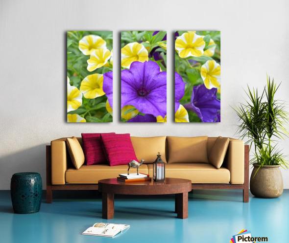Beautiful Blue Flower In Yellow Flower Garden Photograph Split Canvas print