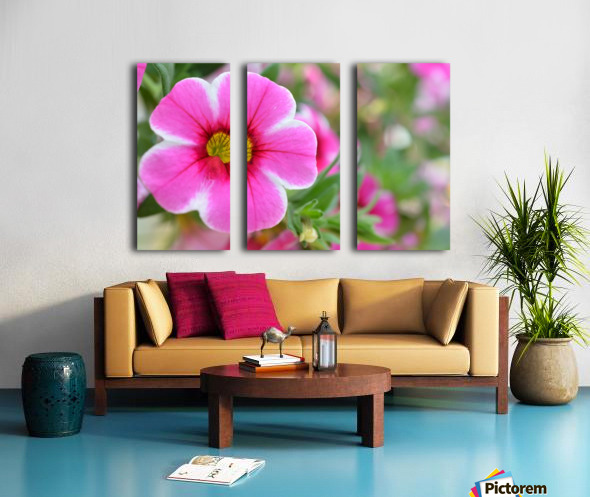 Pink Flower Photography Split Canvas print