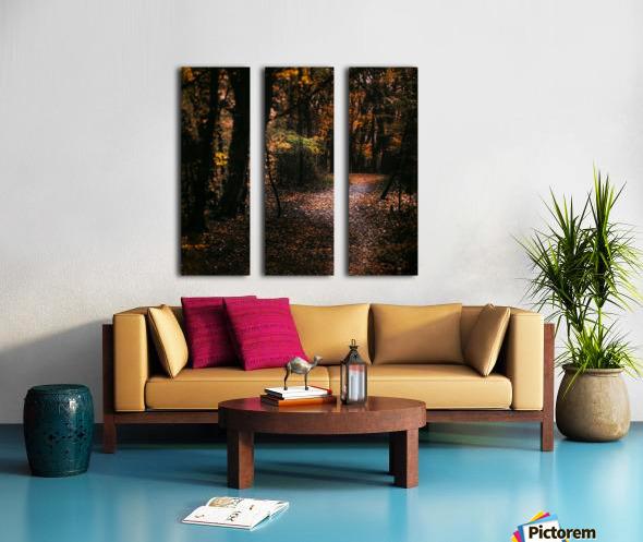 Forest 2_OSG Split Canvas print