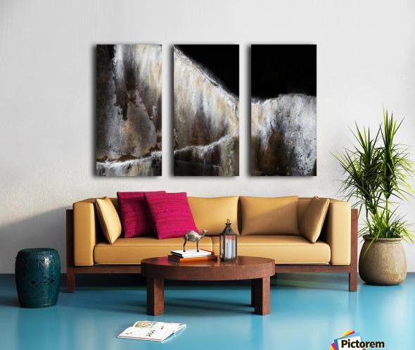 Arion Split Canvas print