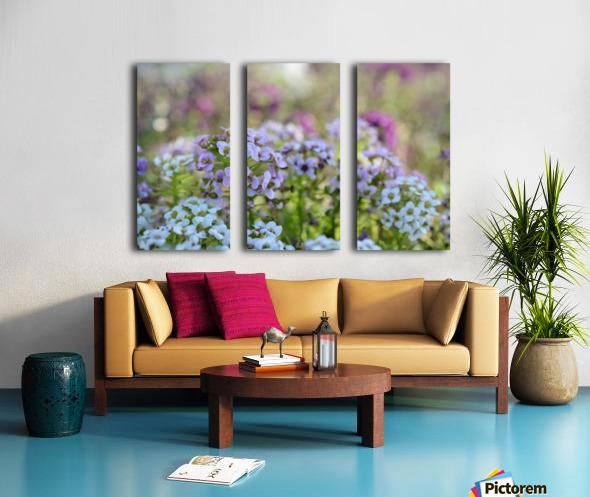 Small Purple Flowers Photograph Split Canvas print