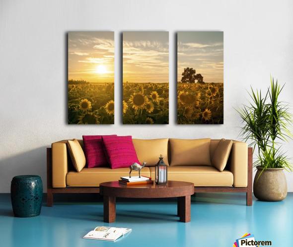 facing the sun Split Canvas print