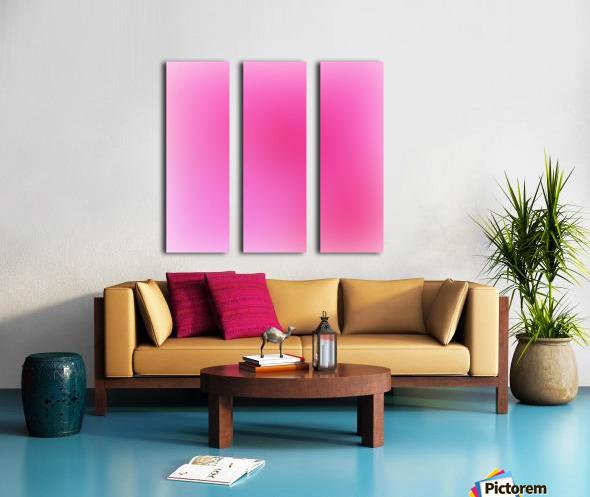 Rose Gradient Background Split Canvas print