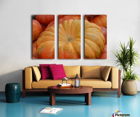 Beautiful Pumpkins Photograph Split Canvas print