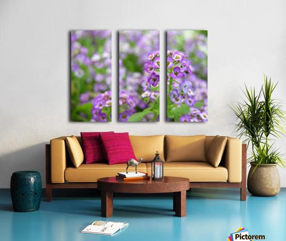 Beautiful Small Purple Flowers Photograph Split Canvas print