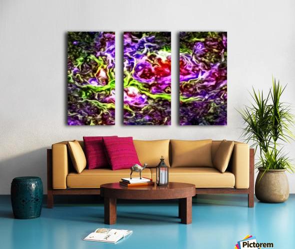 Singularity Split Canvas print