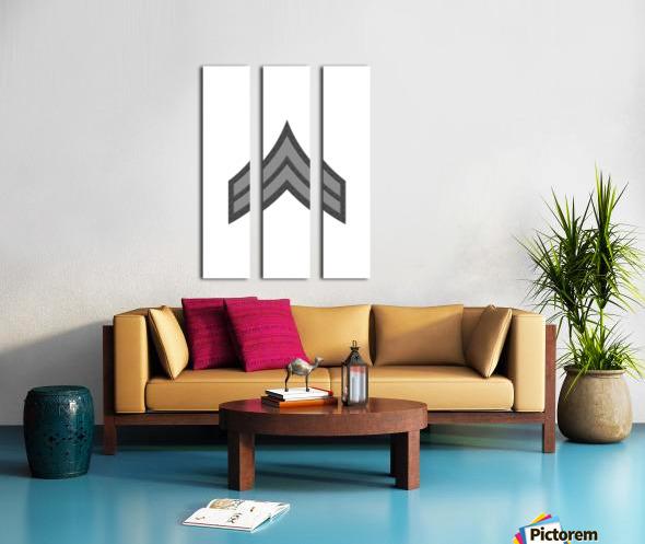 Corporal Split Canvas print