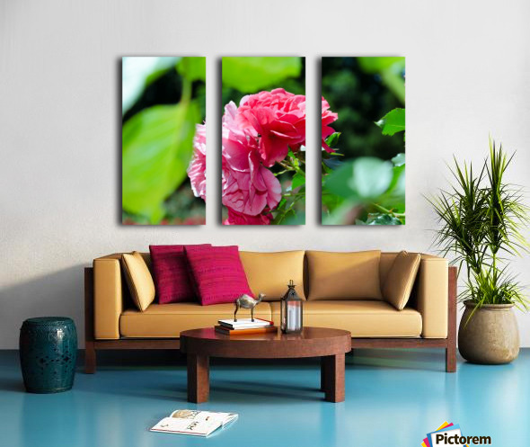 Rose Name Split Canvas print