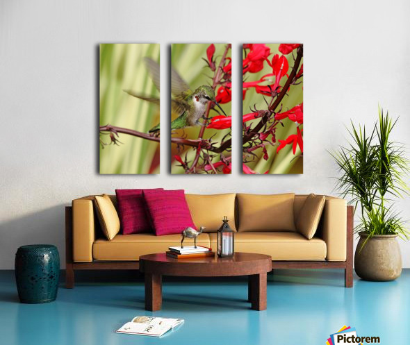 Ruby And Scarlet Split Canvas print