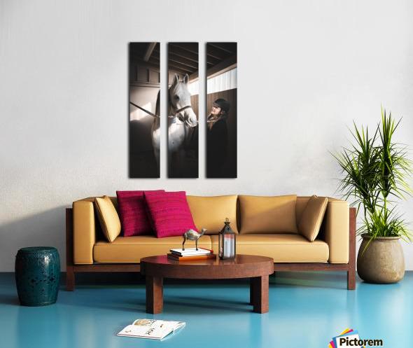 DSC00573 Split Canvas print