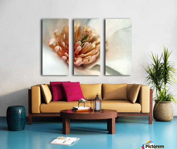 Magnolia Heart Split Canvas print